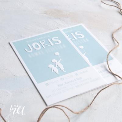 Letterpress geboortekaartje broers Joris