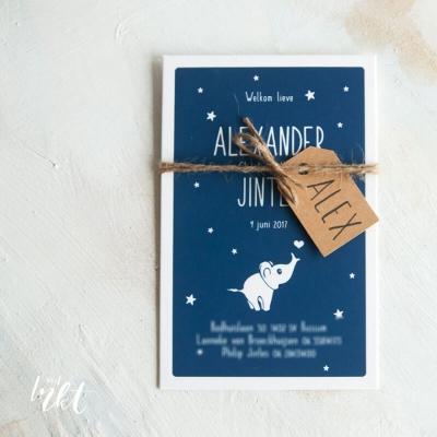 Letterpress geboortekaartje met schattig olifantje